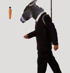 Burro zanahoria 234x245 - En un burro con zanahoria quiere convertirte timazon